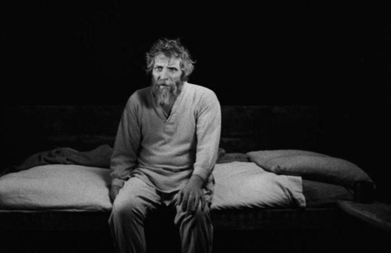 The Turin Horse 6